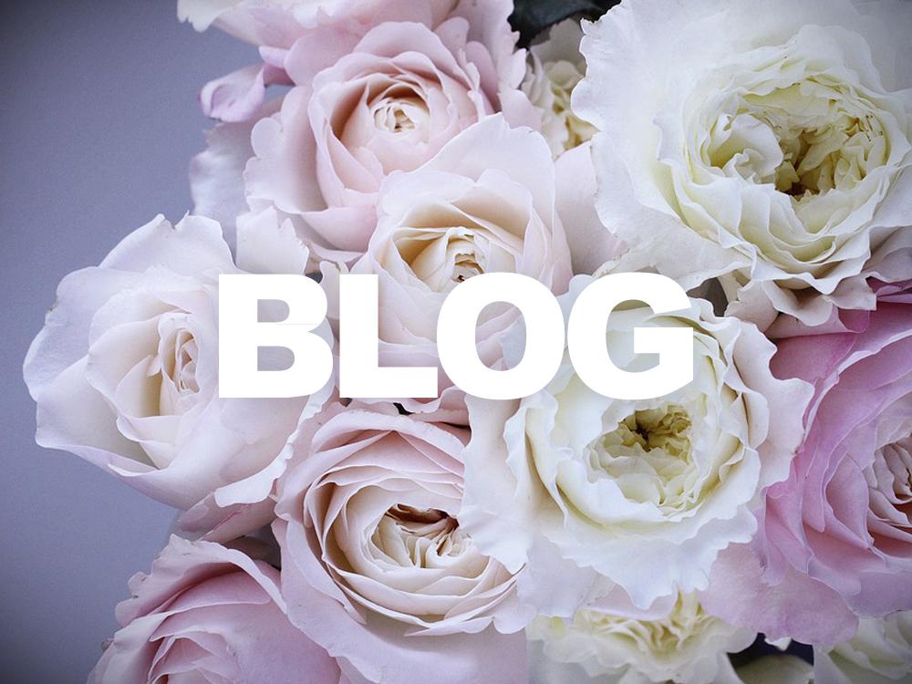 blog-schuitemakerbv